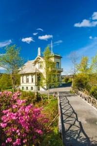 Edvard Griegs hjem Troldhaugen i vakkert solskinn. Rosebusk i blomst i forgrunnen.