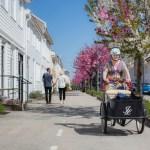 Eldre dame på sykkel