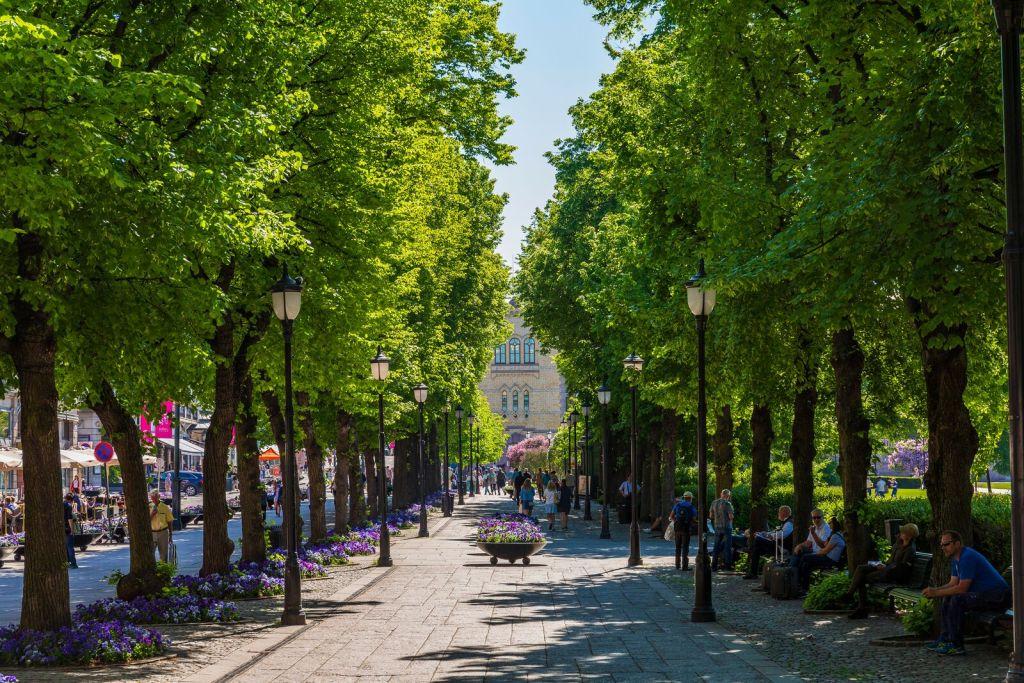 Karl Johans gate i Oslo med trær blomster og folk