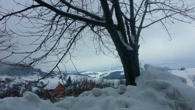 planina goc mountain goc / zalasci sunca