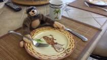 George, Christmas, holiday, travel, breakfast,Florida