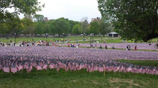 Memorial Day, flags, Boston Common, heroes, remembrance