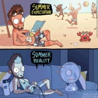 Summer. Expectations Vs Reality