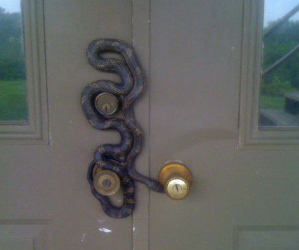 you-are-now-entering-the-nope-zone-28-photos-24-1