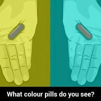 Which Color Do You See?