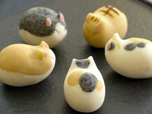 Glorious Cat Sweets Ever