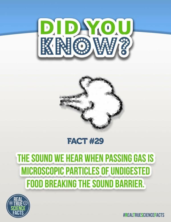 Real True Science Facts That Are Not True At All