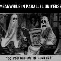 Meanwhile In Parallel Universe