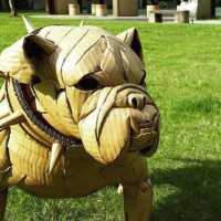 Awesome Lifelike Sculptures Made From Cardboard