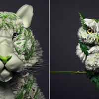 Animal Portraits Made from Beautiful Floral Arrangements