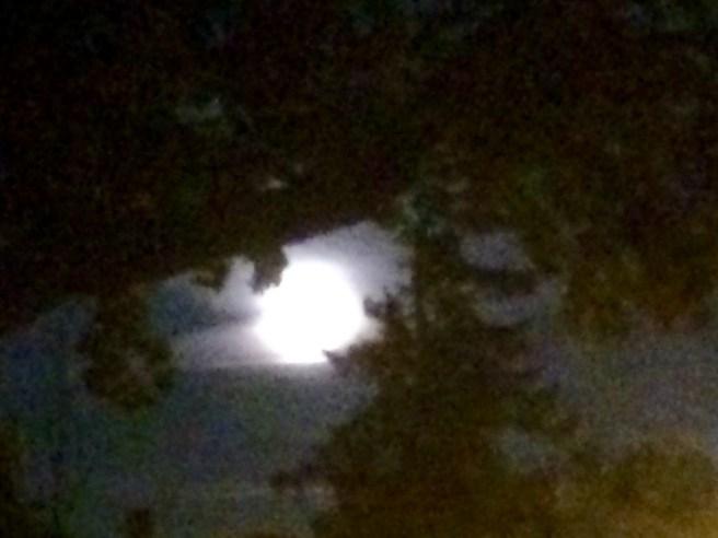Full Moon on Solstice
