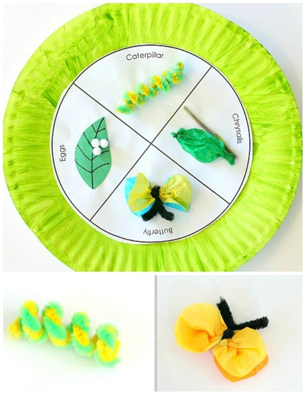 Paper Plate Craft Butterfly