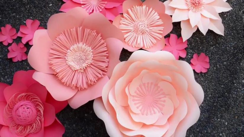 How to Make Giant Paper Flowers Pink