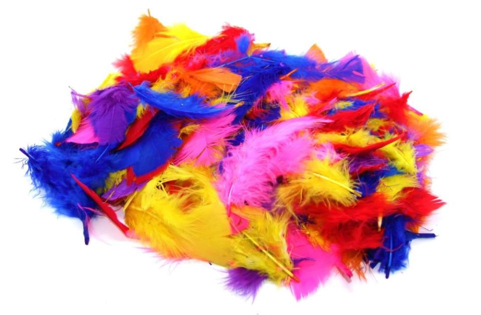 Art and Craft Supplies Feather
