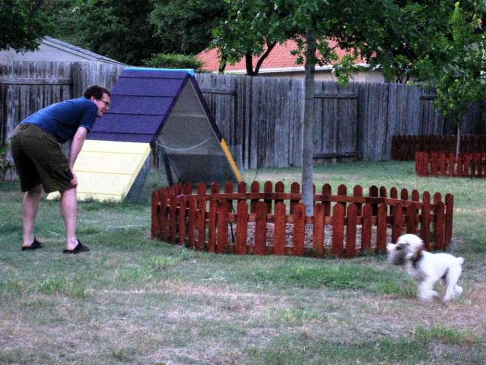 Crafts for Dogs Agility A-frame