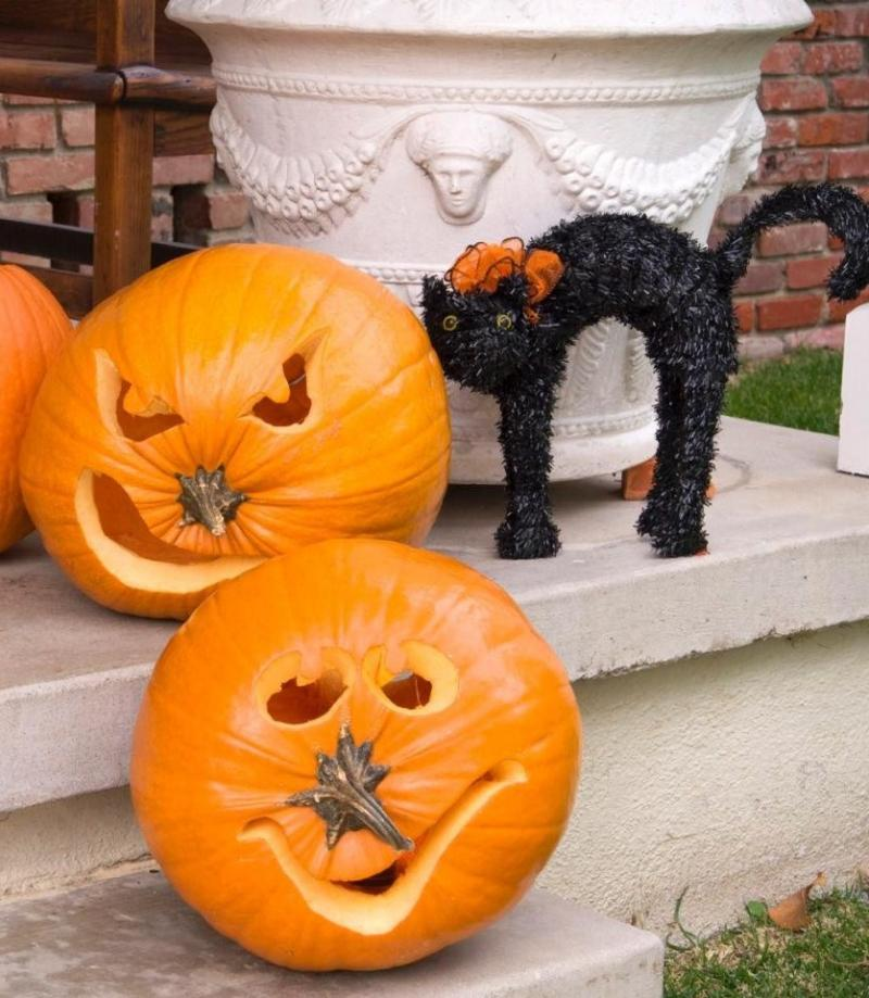 pumpkin carving ideas bat