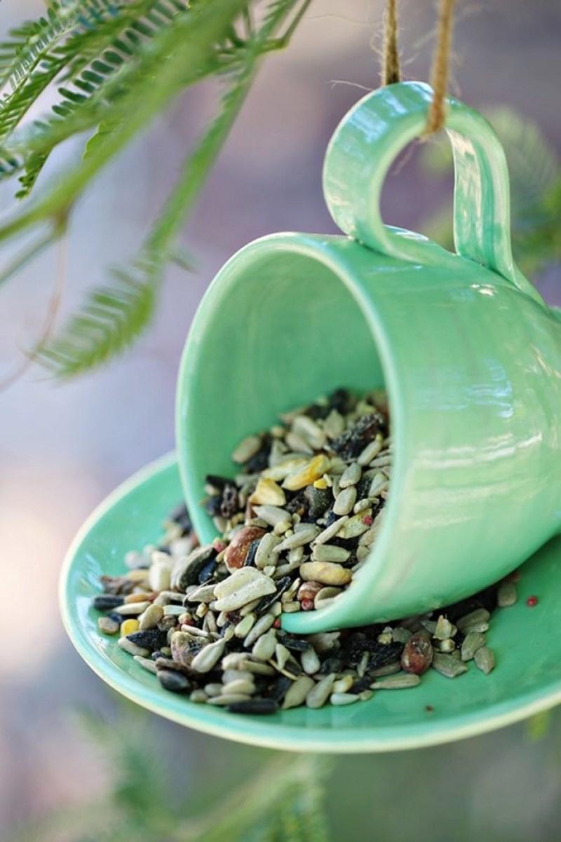 bird feeders benefits