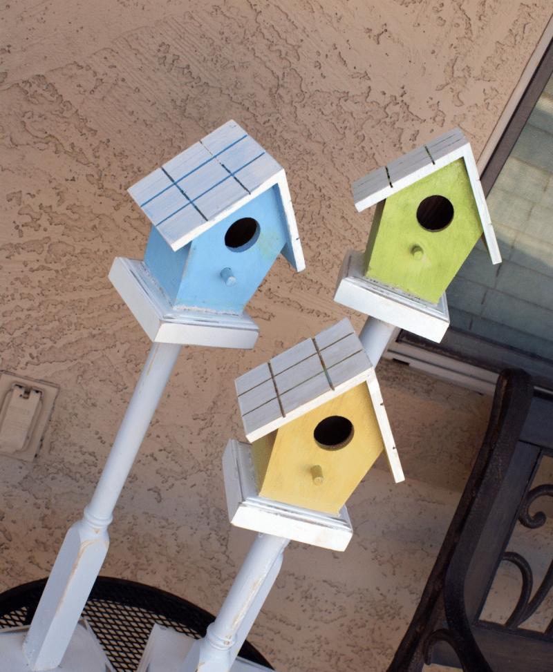 bird house at home depot