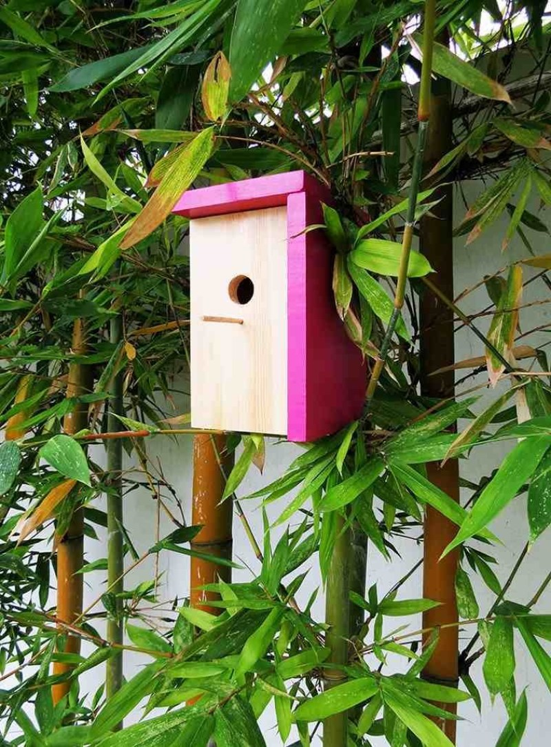 a birdhouse in the hand house hunters
