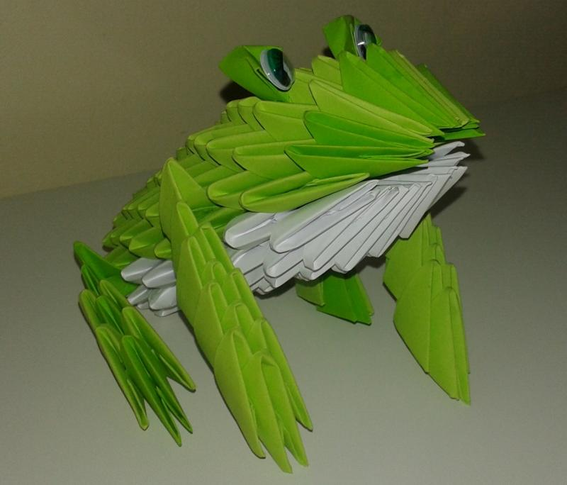 frog fold up book