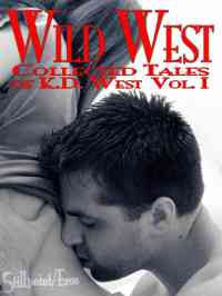 WildWest-Vol1 cover