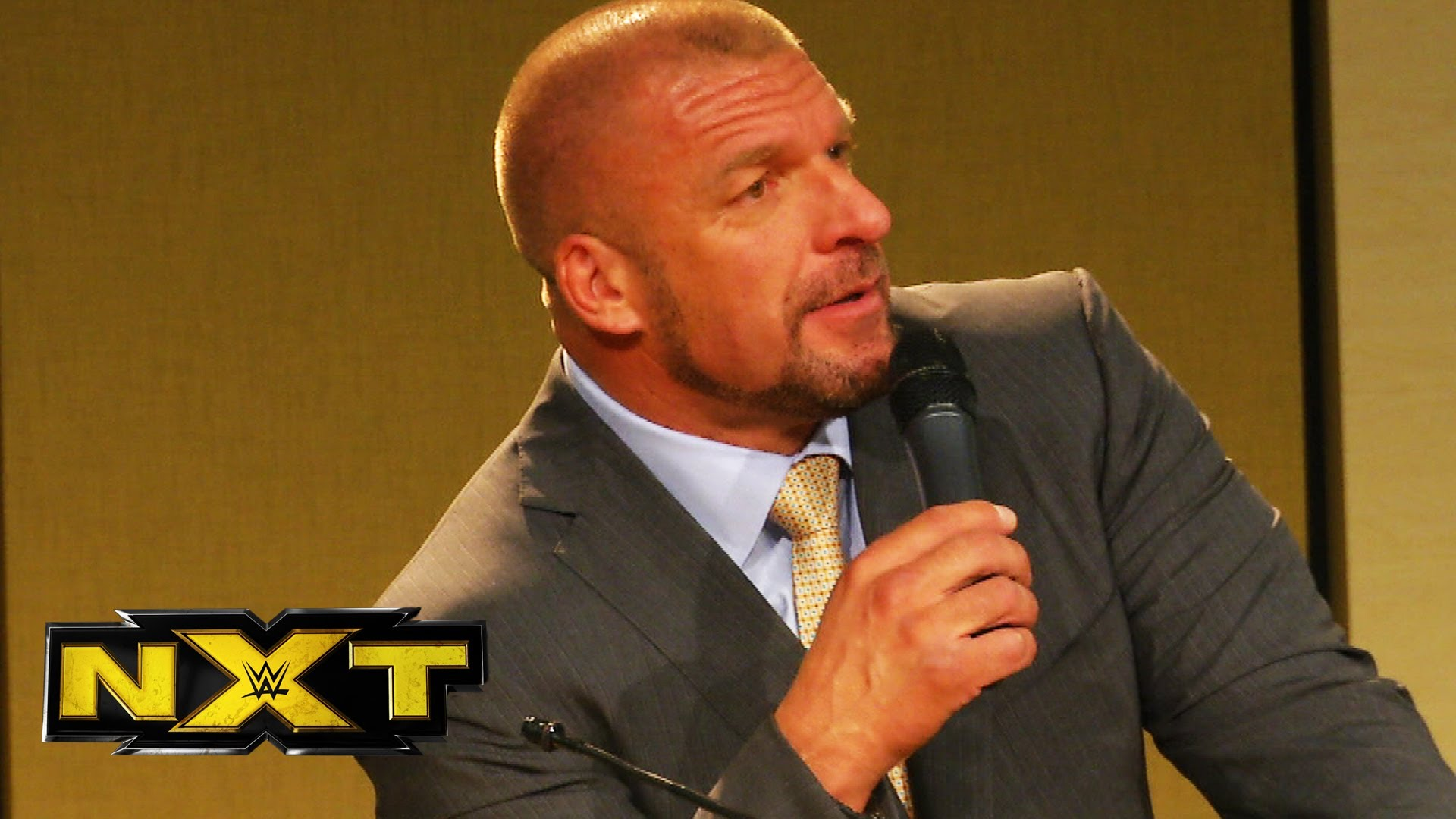 Image result for Triple H NXT