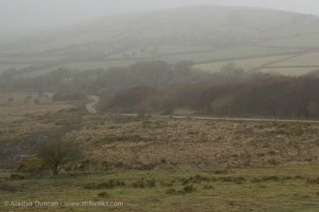 Misty Gower Landscape