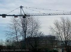 Belfast Crane