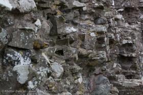 Llansteffan Castle Walls