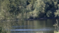 Summer Reservoir screenshot