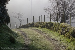 fence in sun and mist