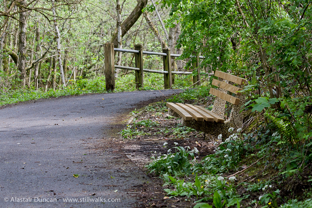 bench and footpath