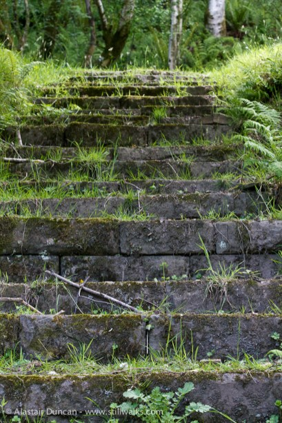 Lakeside steps