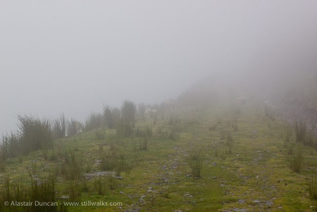 Misty Mountains-11
