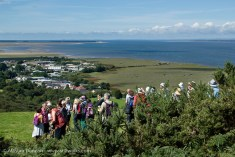 Taste of Gower walkers