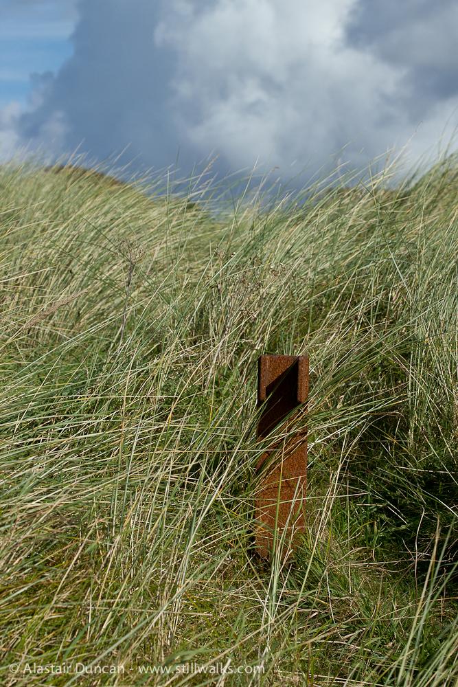 beach grass and rusty post