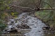 River Dulais