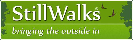 StillWalks Logo