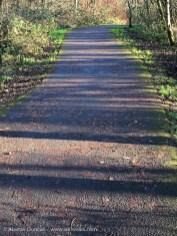 footpath shadows