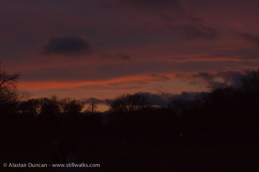 Late evening light