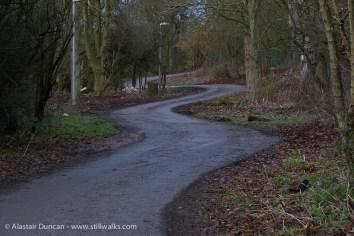 dark twisting footpath
