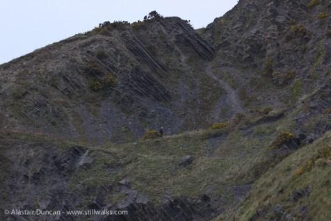 Aberystwyth cliffs