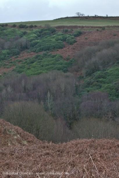 Colourful Cwm Dulais valley