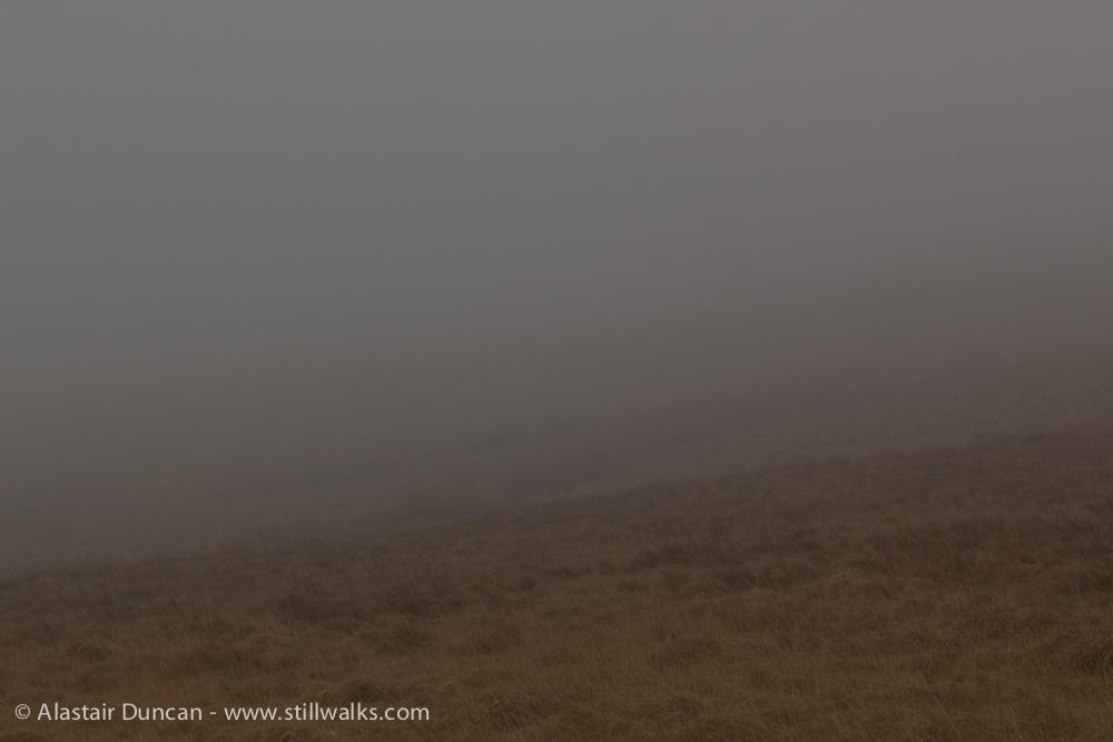 Misty descent