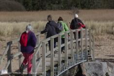walkers on footbridge