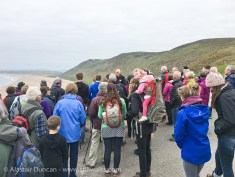 Walkers gather at Rhossili