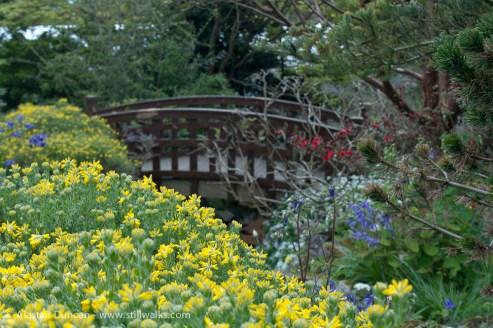 Swansea Botanic Garden