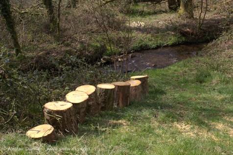 waterside log seats
