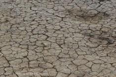 Cracked dry mud