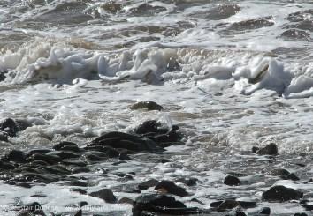 sea foam and stone